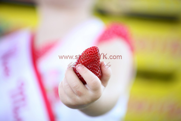 Roseville Strawberry Festival 2010