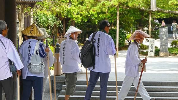 Beleef de Tradities van Shikoku met Selfdrive