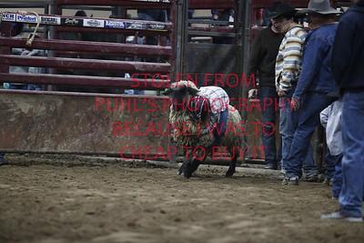 fri 3. Mutton Busting