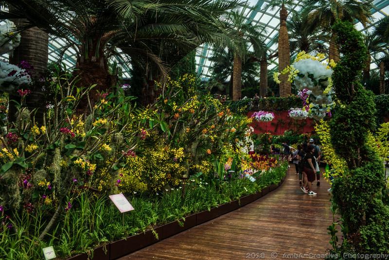 2018-07-18_FunWithFamily@GardensByTheBay_SingaporeSG_18-HDR.JPG