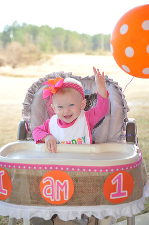 Brooklyn's First Birthday 11/16/2013