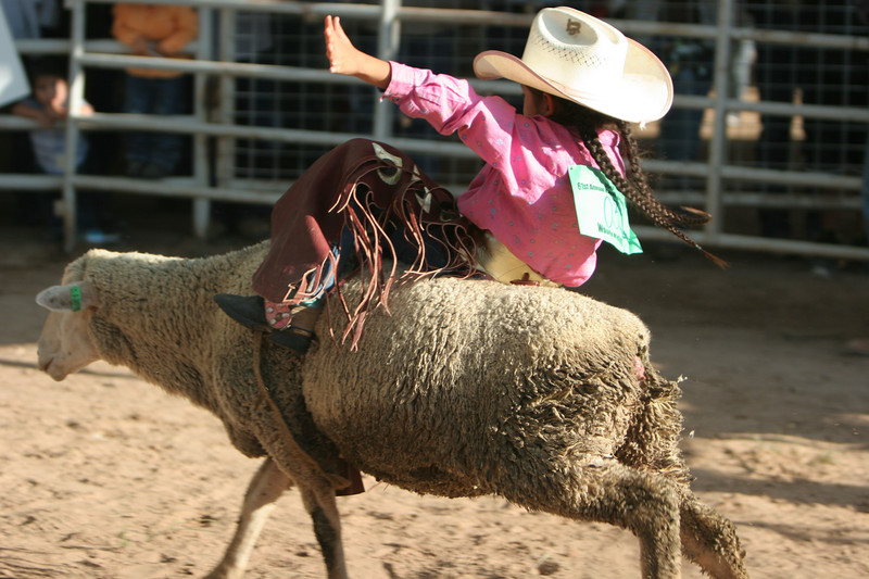 Rodeo  1165.jpg