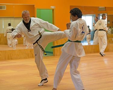 RQuam Taekwondo 2014