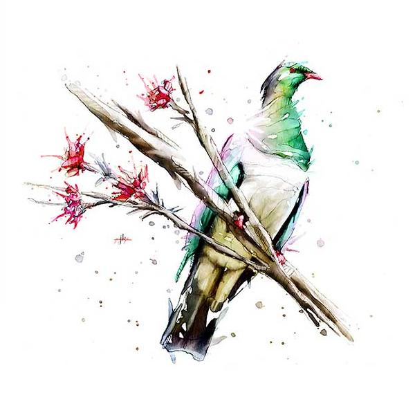 nz-bird-5.jpg