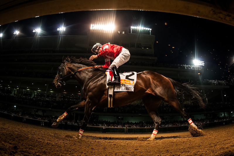 Fort Larned (E Dubai) wins the Stephen Foster Handicap (G1) with a wire to wire win at Churchill Downs on 6.15.2013.  Brian Hernandez up, Ian Wilkes trainer, Janis Whitham owner.
