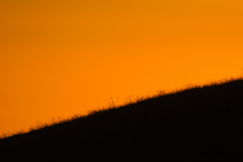 Fire in the sky - Coyote Hills Regional Park, Fremont, CA, USA