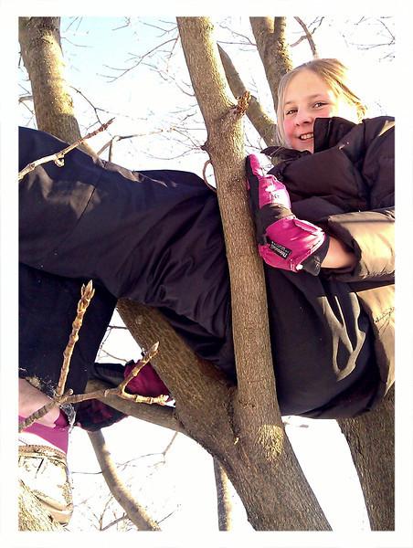 Olivia-in-tree.jpg