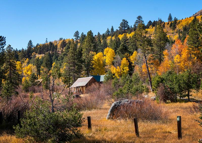 carson valley shack.jpg