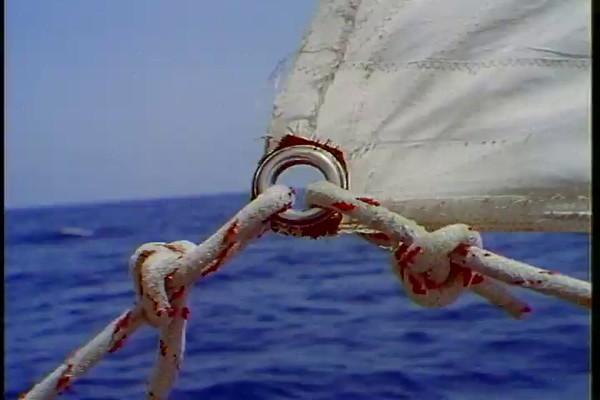 sail.07.mov