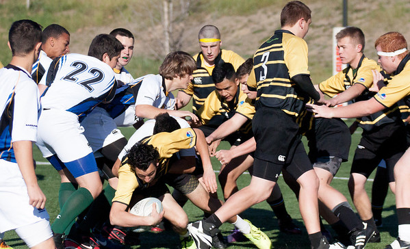 Cavaliers Rugby Feb 1,  2014