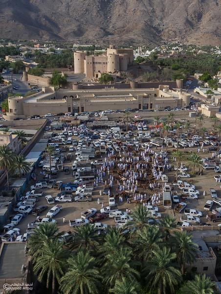 DJI_0101-1- Alrustq-Habtah- Oman.jpg
