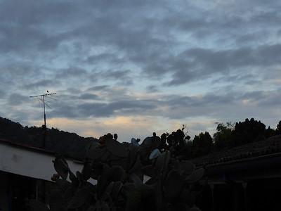 17-019 Otun-Quimbaya Reserve 17 Jan Susan
