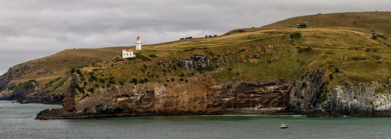 Taiaroa Head and Lighthouse