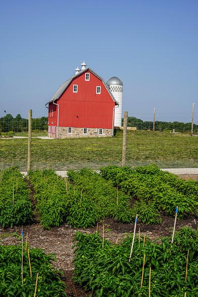 Arboretum Farm 8-19-16.JPG