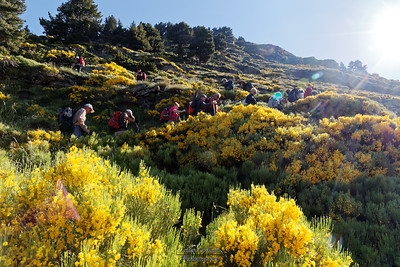 Juin - Séjour Andorre