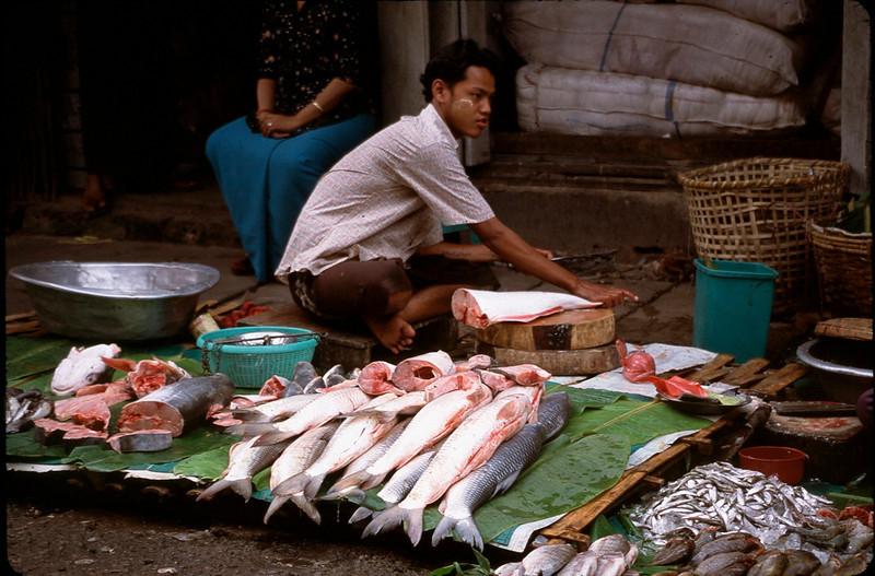 Myanmar1_012.jpg