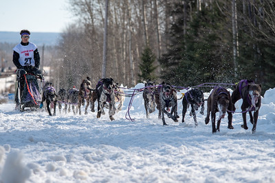 Canadian Open Sled Dog Championship 2019