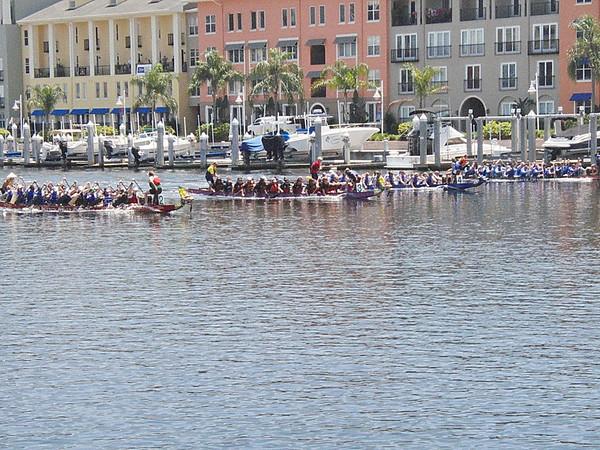 2011 Tampa Dragon Boat Races