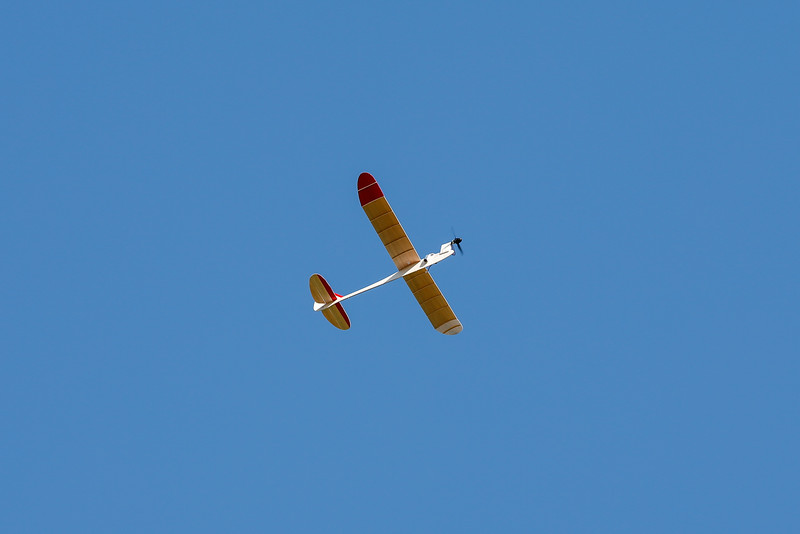 RC_Scout-2.jpg