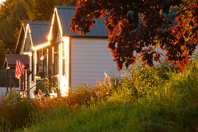 Gilded with Evening Light September 2013, Cynthia Meyer, Tenakee Springs, Alaska