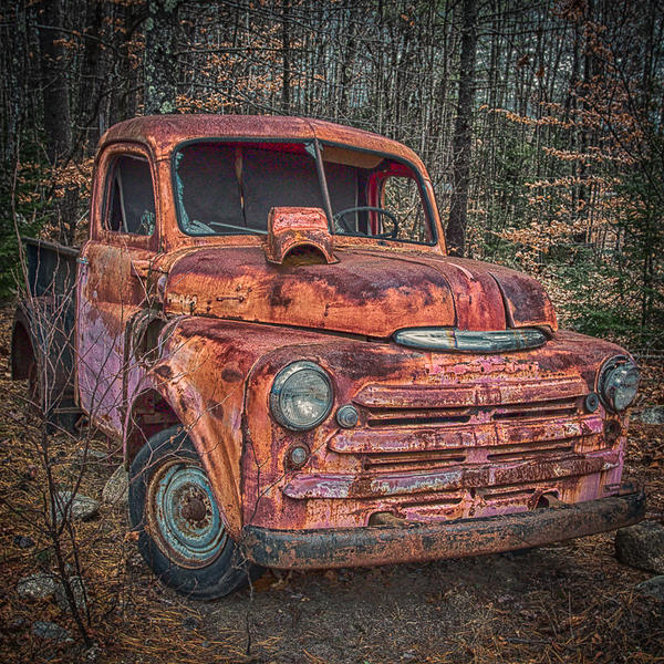 Dead Dodge_John Hoffman.jpg