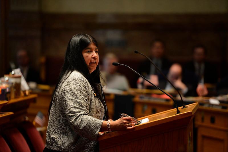 . Senator Irene Aguilar speaking for HB13-1229 as the Denver Senate prepares for the final vote and passage concerning criminal background checks at the Denver State Capitol March 11, 2013 Denver, Colorado. (Photo By Joe Amon/The Denver Post)