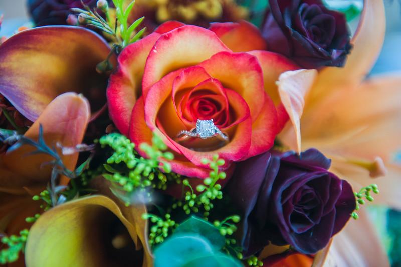 Jodi-petersen-wedding-509.jpg