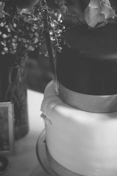 CakeDancing-25bw.jpg