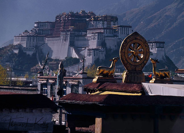 Potala palace with the dharmachakra and deer in the foreground.Lhasa. Potala Palace, once home to the Dalai Lama's who were the last to rule the country now stands as a museum piece, a money machine for the Chinese Government. But the Tibetan people, still to this day come and prostrate in fron of it and opper prayers for the long life to His Holiness the 14th Dalai Lama and Tibet's freedom.