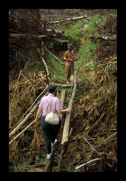 Borneo - 1989.jpg