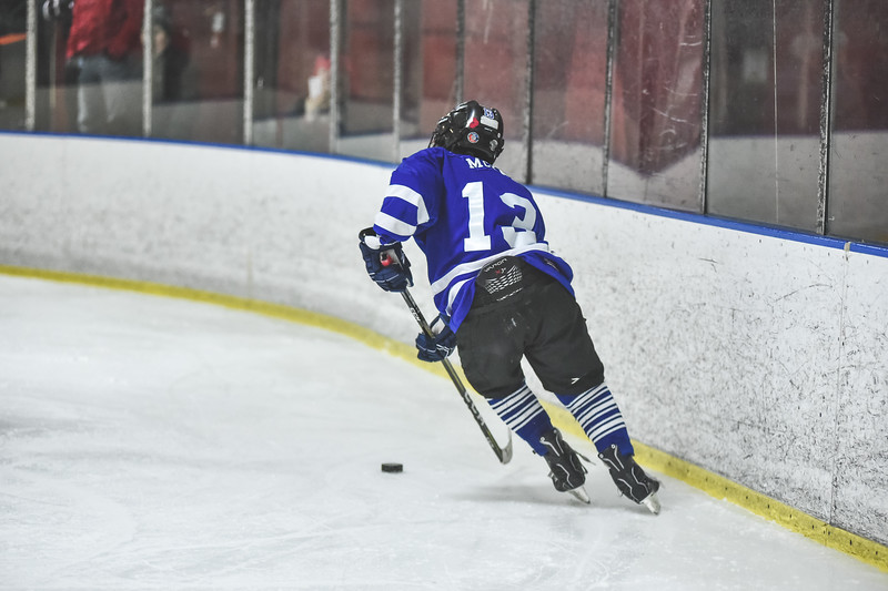 Leafs-28.jpg