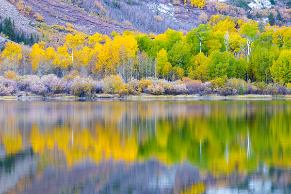 Eastern Sierra's (Mammoth Lakes) 10.18