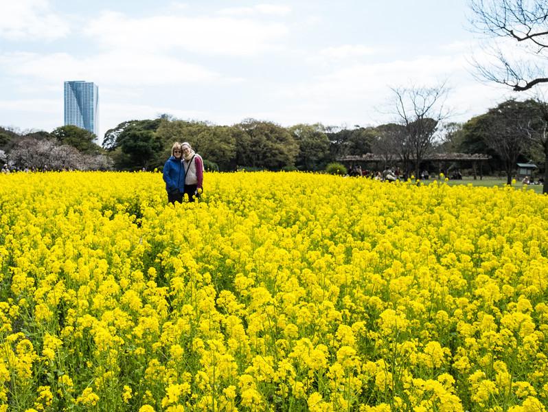 Tokyo Day 3 (80 of 271).jpg