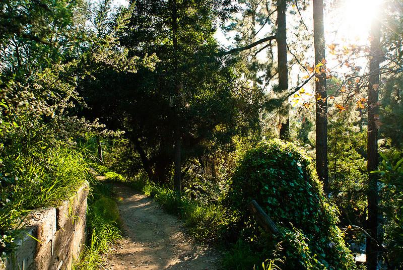 20110122_SierraMadreHikeandPark_016.jpg