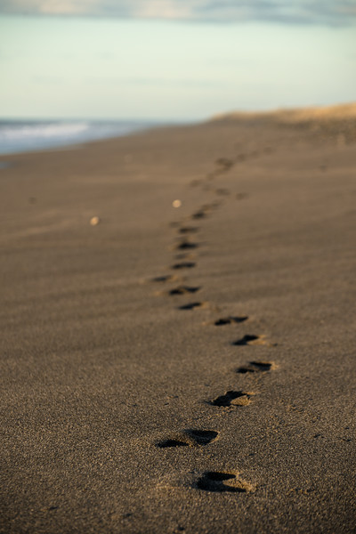 feetprints in the sand-1.jpg
