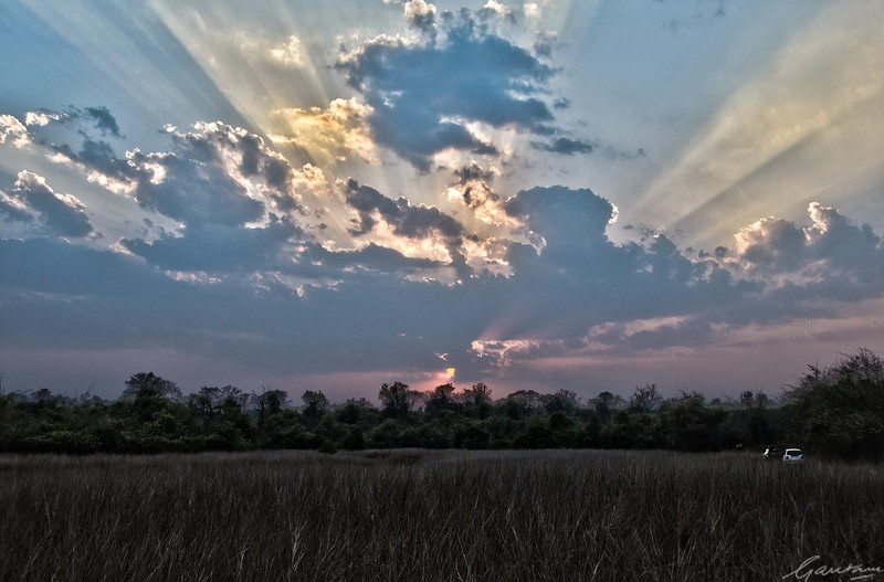 Sunset at Telia | Tadoba, April 2012