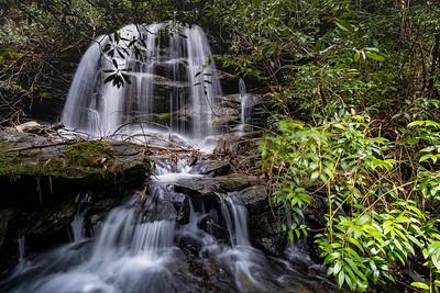 Pounding Mill Creek