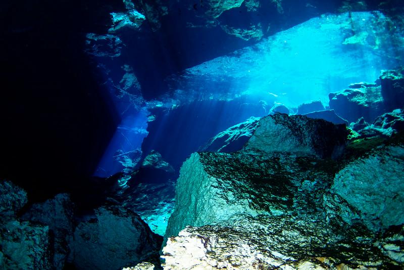 2014 Whale Shark - Cave Adventure-106.jpg
