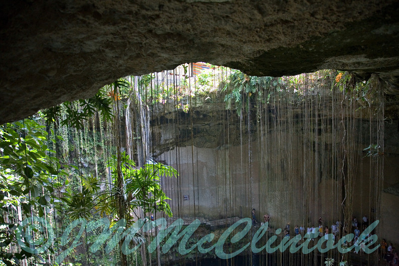 """A cenote """"sinkhole"""" just inside the surface."""