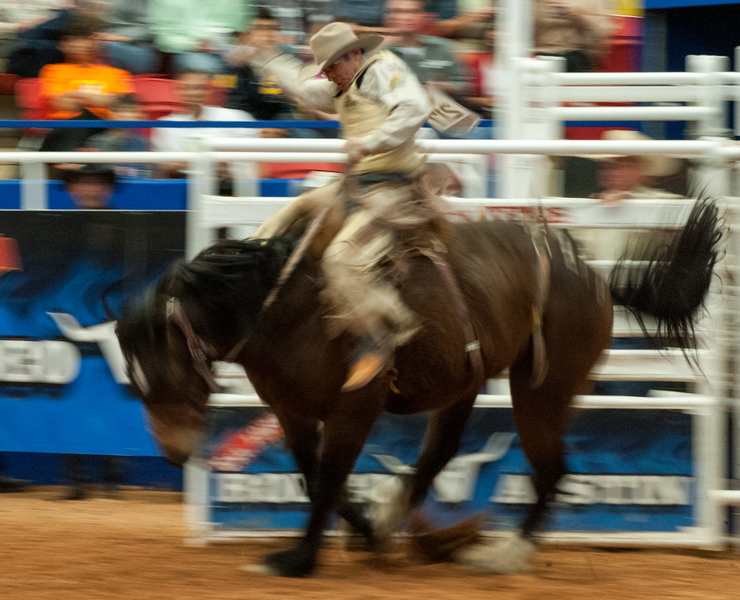 Austin_Rodeo-2769.jpg