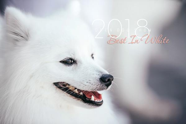 Best In White 2018
