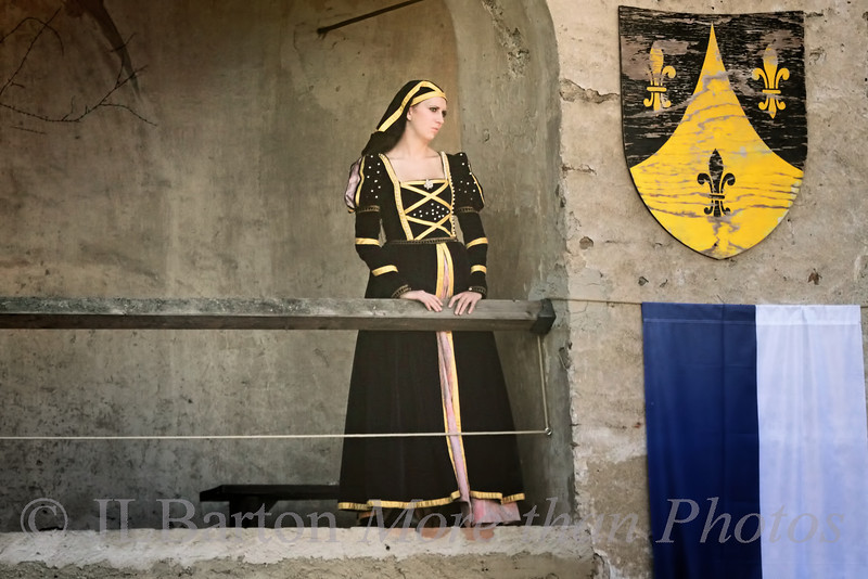Lady in Waiting Ritterturnier 2012 Rosenburg Medieval Festival