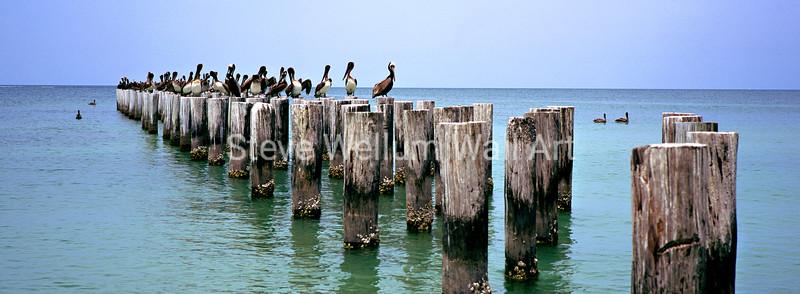 Pelican Wharf