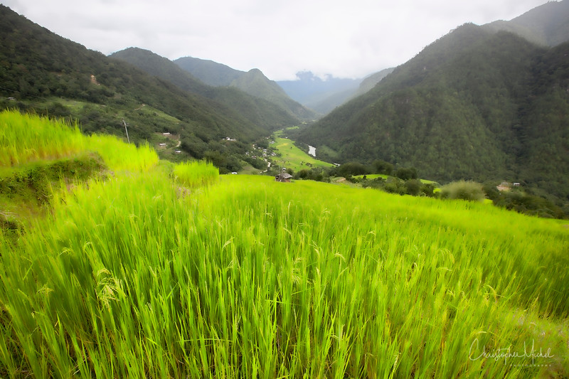 punakha-dzong_chorten-nebu_20120917_8574.jpg