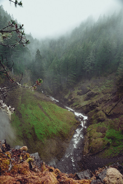 A Day in the PNW_06.JPG