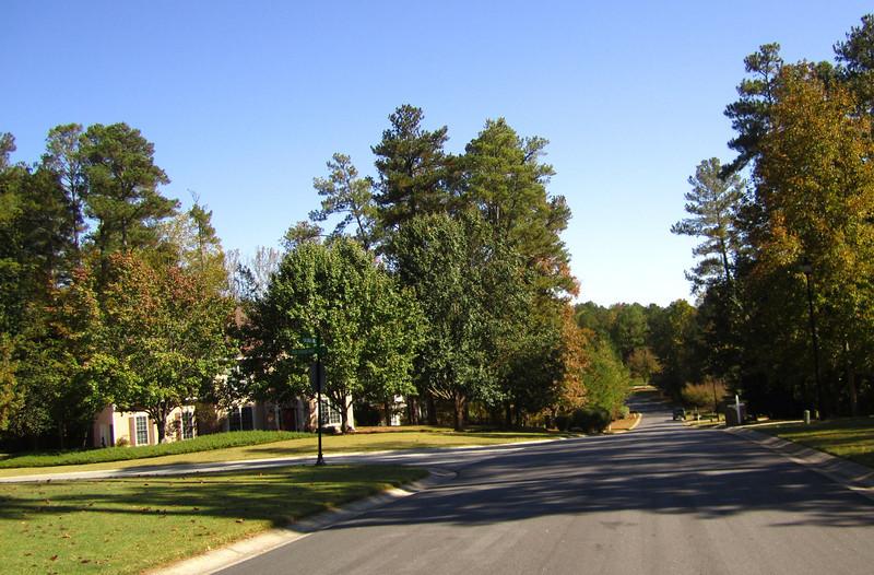 Fox Creek Cumming GA Homes (8).JPG