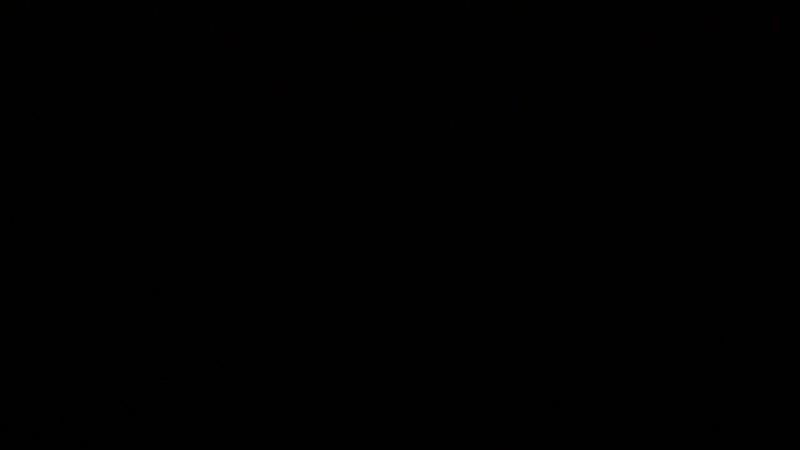 DSC_9145.MOV