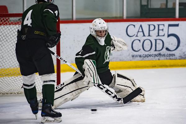 2019 AHS Hockey