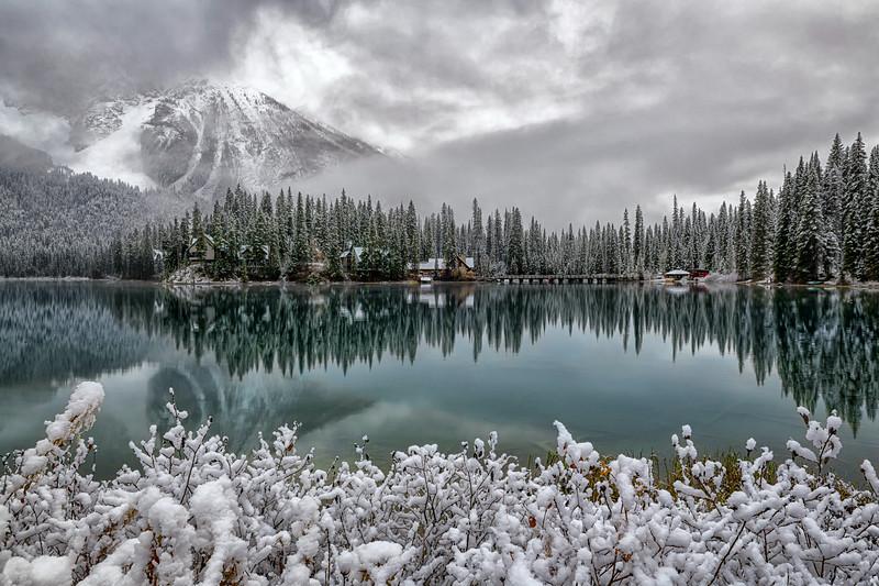 Snow Serenity