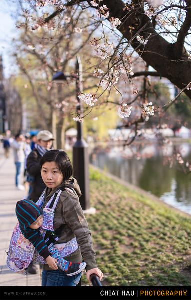 Japan_Tokyo_Apr_2016-119.jpg